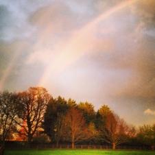 rainbow 3