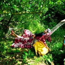 Jane's enchanted Tea Garden - 10