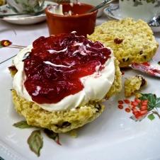 Jane's enchanted Tea Garden 19