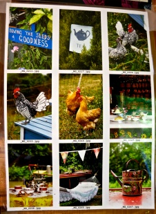 Jane's enchanted Tea Garden - 5