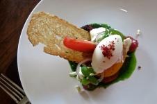 Tomato Sorbet and Heritage Salad