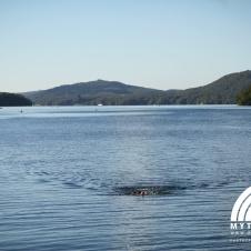 windermere swim 19
